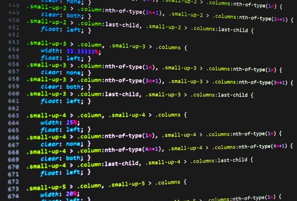 embedding-software-1